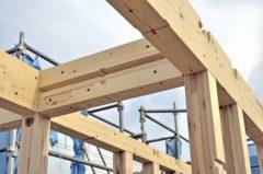 知らないと損する!木造住宅を長持ちさせる秘訣とは?
